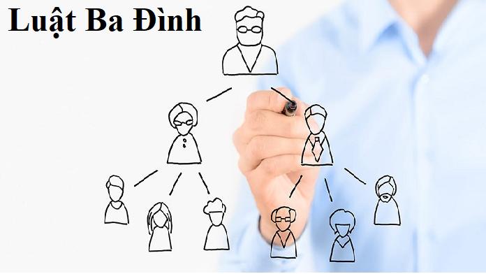 xây dựng mẫu điều lệ công ty TNHH 1 thành viên