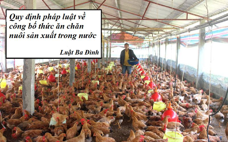Trình tự thủ tục công bố thức ăn chăn nuôi sản xuất trong nước