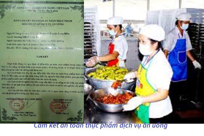 Mẫu giấy cam kết an toàn thực phẩm lĩnh vực y tế