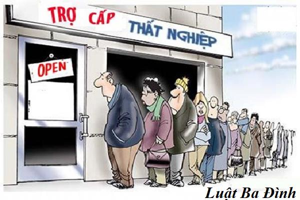 Thủ tục làm bảo hiểm thất nghiệp.